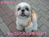 2005_1002_172644A