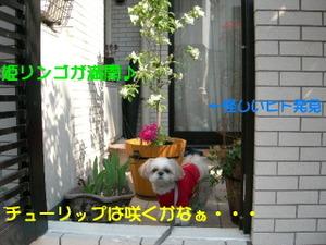 2006_0330_092749a