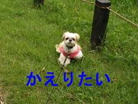 2008_1007_144840